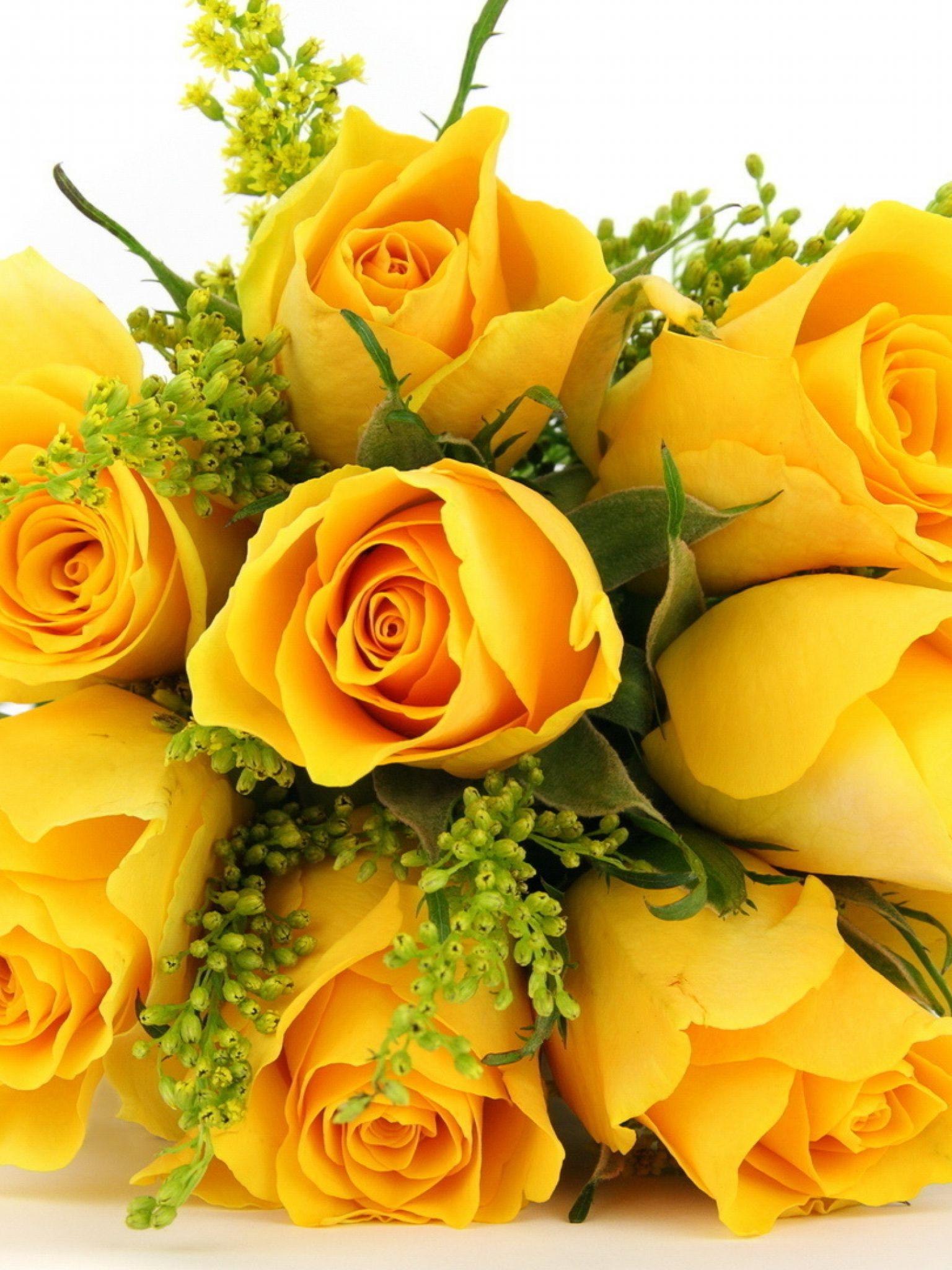 Годовщиной, цветы на 50 лет картинки